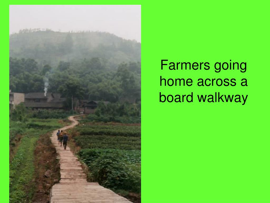 Farmers going home across a board walkway