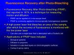 fluorescence recovery after photo bleaching