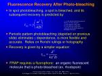 fluorescence recovery after photo bleaching2