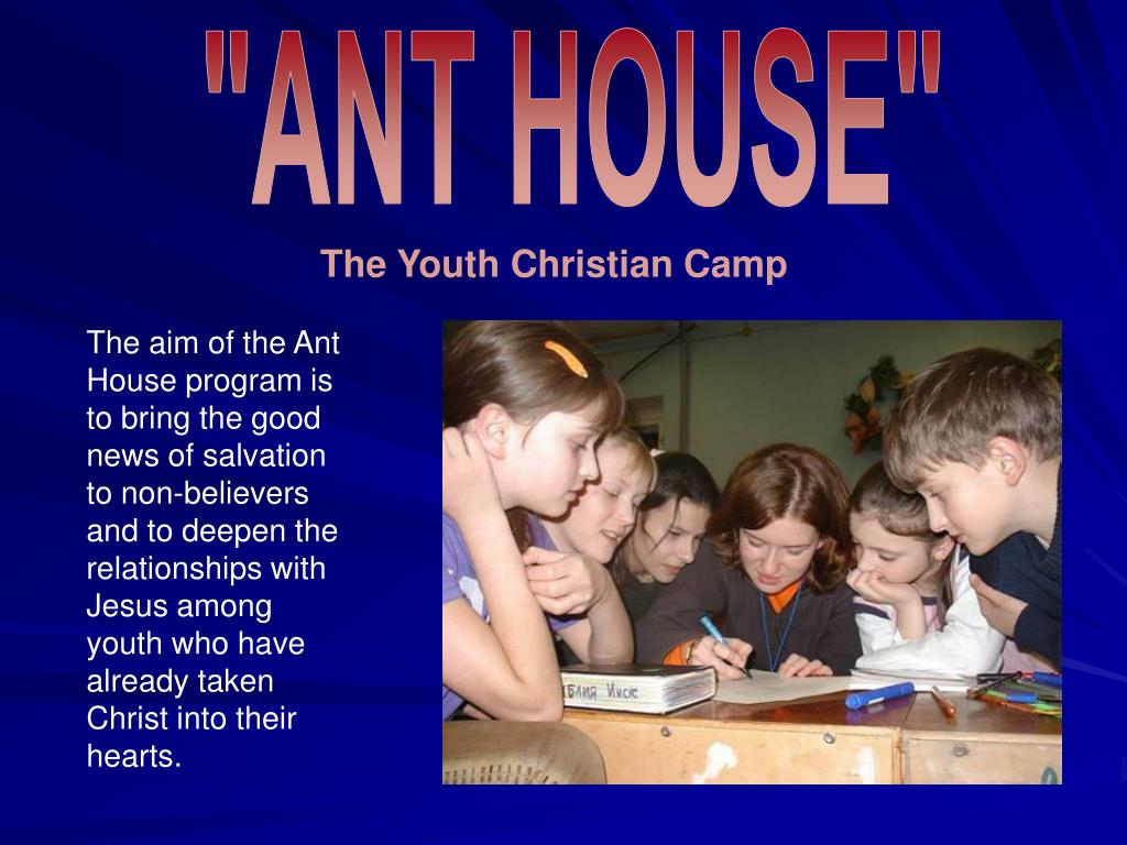 """ANT HOUSE"""
