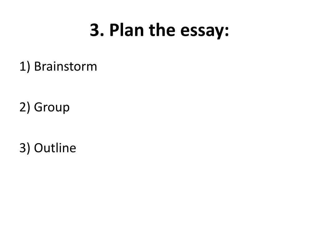 3. Plan the essay: