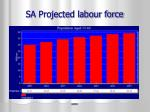sa projected labour force
