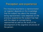 perception and experience1