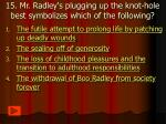 15 mr radley s plugging up the knot hole best symbolizes which of the following