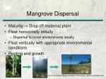 mangrove dispersal