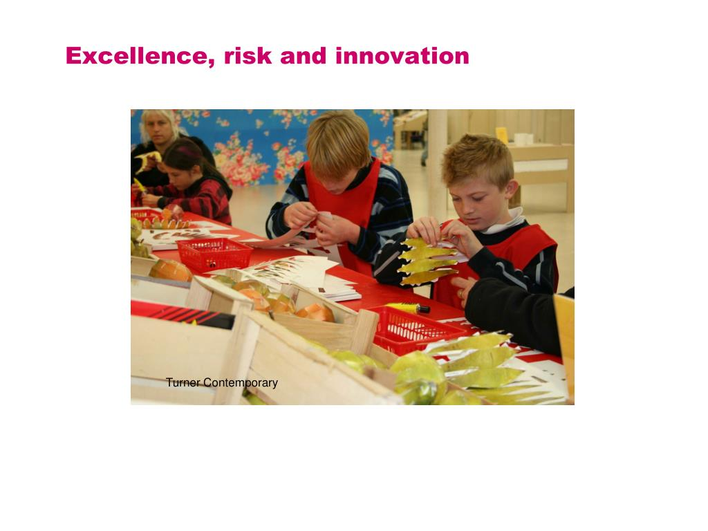Excellence, risk and innovation