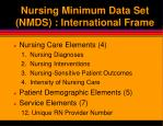 nursing minimum data set nmds international frame