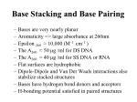 base stacking and base pairing