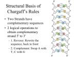 structural basis of chargaff s rules