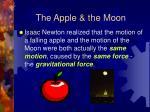 the apple the moon