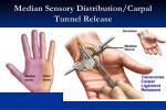 median sensory distribution carpal tunnel release