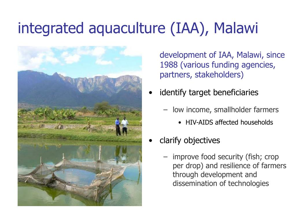 development of IAA, Malawi, since 1988 (various funding agencies, partners, stakeholders)