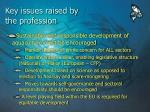 key issues raised by the profession