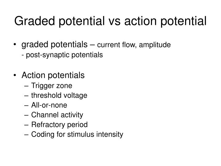 Ppt Graded Potential Vs Action Potential Powerpoint Presentation Free Download Id 1182240 This membrane potential results in positive and negative. graded potential vs action potential