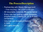 the process description
