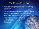 the process overview