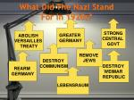 what did the nazi stand for in 1920s