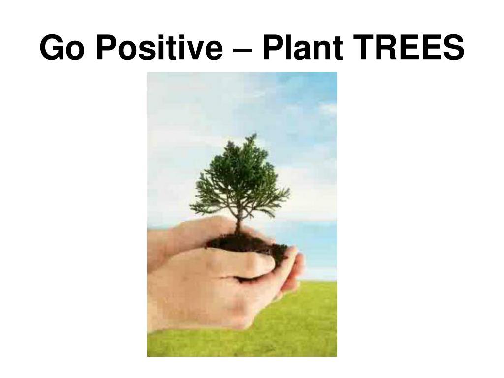 Go Positive – Plant TREES