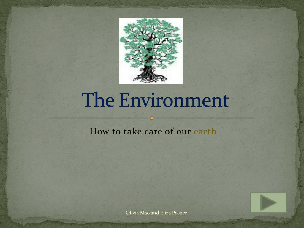 the environment l.