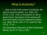 what is authority1