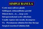 simple ranula1