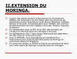 ii extension du moringa