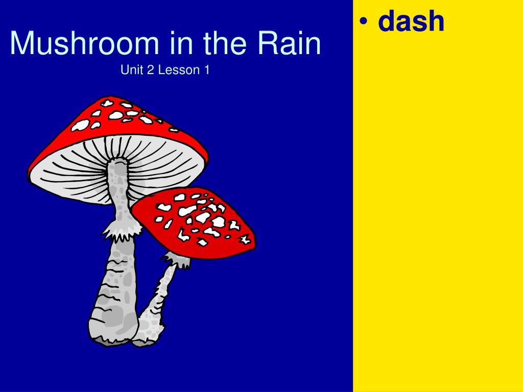 mushroom in the rain unit 2 lesson 1 l.