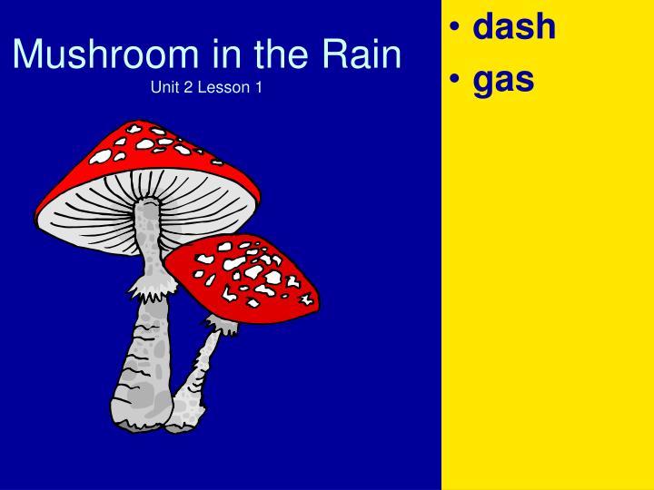 Mushroom in the rain unit 2 lesson 12