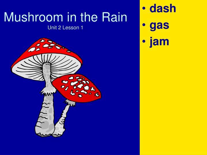 Mushroom in the rain unit 2 lesson 13