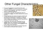 other fungal characteristics