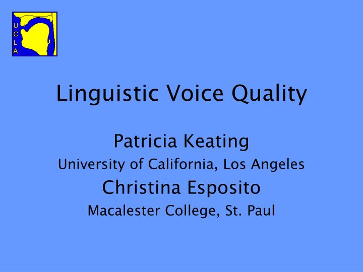 linguistic voice quality n.