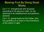 bearing fruit by doing good works1