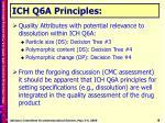 ich q6a principles