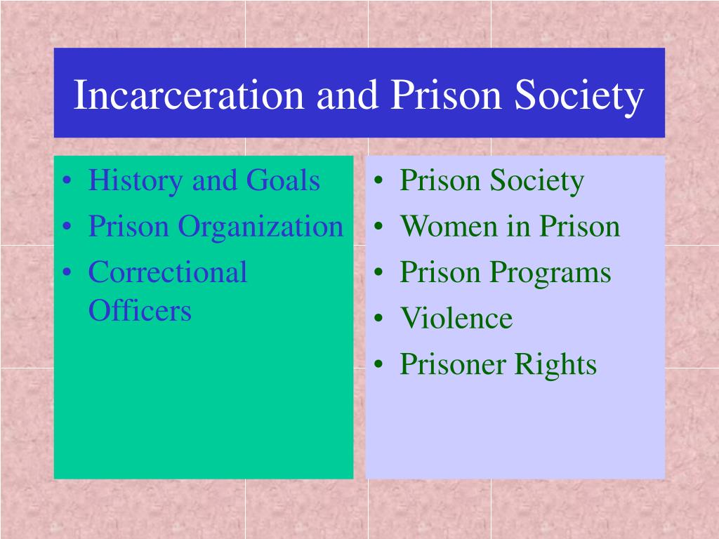 incarceration and prison society l.