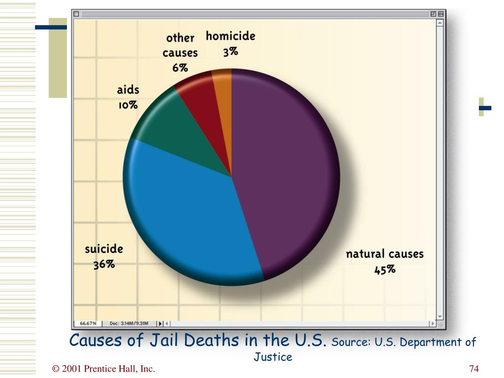 Causes of Jail Deaths in the U.S.