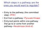 which steps in a pathway are the ones you would want to regulate