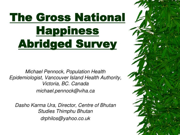 the gross national happiness abridged survey n.