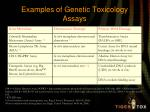 examples of genetic toxicology assays