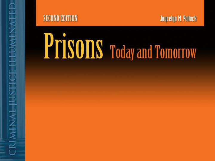the privatization of american prisons essay