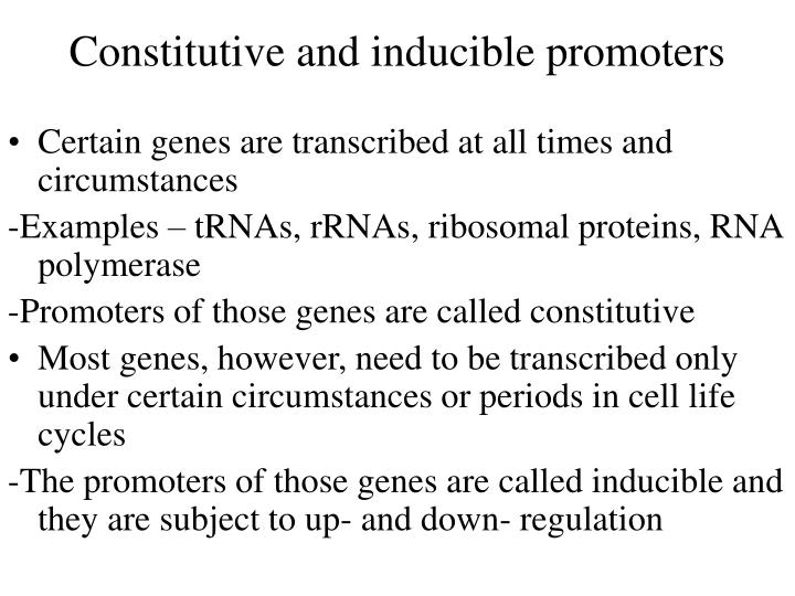 Constitutive and inducible promoters
