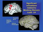 significant activations related to working memory load lh