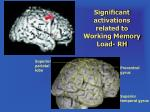 significant activations related to working memory load rh
