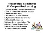 pedagogical strategies c cooperative learning