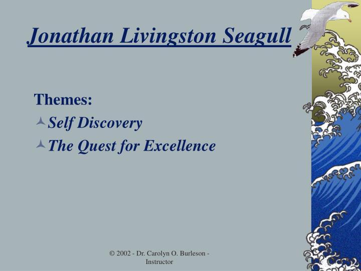 Jonathan livingston seagull3