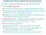 temperate forest physical environment