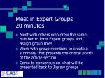 meet in expert groups 20 minutes