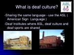 what is deaf culture