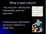 what is deaf culture2