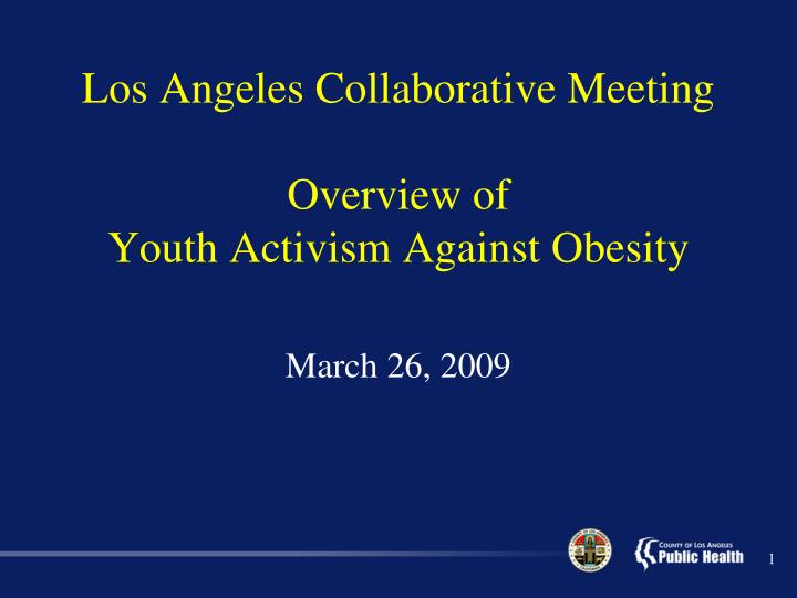 los angeles collaborative meeting overview of youth activism against obesity n.