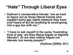 hate through liberal eyes